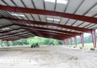 Renegade Steel Building interior riding arena